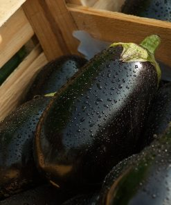 AUBERGINES & COURGETTES