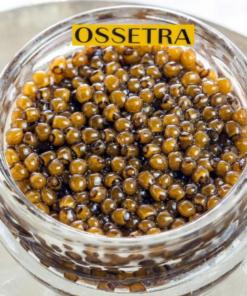 OSSETRA